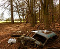 Disused Car Dumped In Woodland Royalty Free Stock Images - 89749