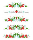 Vector Text Dividers With Strawberry And Flower Stock Photography - 80021732