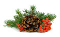 The Branch Of A Christmas Tree, Cone And Red Berries. Stock Photos - 80073943