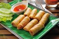 Spring Roll Stock Photo - 80129400