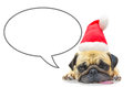Merry Christmas And Happy New Year 2017 Postcard With Pug Dog Stock Photography - 80145032