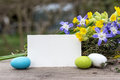 Easter Greetings Royalty Free Stock Images - 80166779