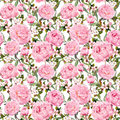 Peony Flowers, Sakura. Repeating Pink Floral Background. Watercolor Stock Photography - 80223882