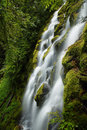 Proxy Falls, Oregon Royalty Free Stock Images - 80227969
