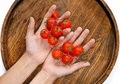 Cherry Tomatoes In Hands Royalty Free Stock Images - 8048269