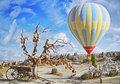 Colorful Hot Air Balloon Flying Over The Valley At Cappadocia Royalty Free Stock Image - 80436806
