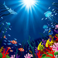 Underwater World Square Background Of Tropical Sea Royalty Free Stock Photo - 80454785