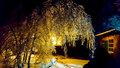 The Frosty Night. Royalty Free Stock Images - 80455169