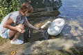 Tanned Caucasian Woman Feed Wild White Swan In Bled, Slovenia Stock Photo - 80472930