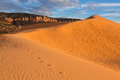 Coral Pink Sand Dunes State Park Royalty Free Stock Photography - 80489047