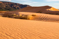 Coral Pink Sand Dunes State Park Royalty Free Stock Images - 80489159