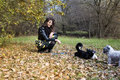 Woman Playing With Her Dogs  In An Autumn Park Stock Photo - 80491830