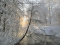 Fluffy Snow Stock Images - 80492394