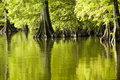 Emerald Green Reflections Royalty Free Stock Images - 8059599