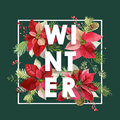 Winter Christmas Design In Vector. Winter Flowers With Pines Stock Images - 80500134