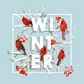 Winter Christmas Design In Vector. Winter Birds With Rowan Berries Royalty Free Stock Images - 80500329