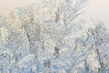 Ice On A Window, Background Royalty Free Stock Image - 80559286
