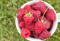 Sweet Raspberry In Bowl Royalty Free Stock Images - 80663229