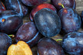Fresh Plums Stock Image - 80706851