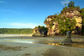 Cliff With Tree On Tropical Beach At Low Tide Stock Images - 80715074