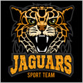 Sport Team - Jaguar, Wild Cat Panther. Vector Illustration, Black Background, Shadow. Royalty Free Stock Images - 80725259