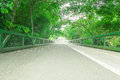 Bridge With A Path For Bike And People Walk In A Park Royalty Free Stock Image - 80736626