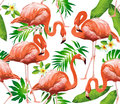 Flamingo Bird And Tropical Flowers - Seamless Pattern  Stock Photos - 80741283