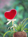 Red Heart Made Of A  Towel, Stick With The Pencil, Tie Ribbon And Dwarf Pineapple In The Vase Shaped Boot. Royalty Free Stock Image - 80748526