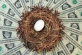 Nest Egg And Money Stock Images - 8089804