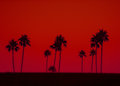 Art Photo Of Palm Trees In Silhouette Against Red Sky Stock Images - 80848634