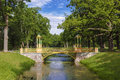 Colorful Bridge In The Chinese Style In The Alexander Park Of Tsarskoye Selo Stock Photos - 80857743