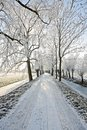Countryroad In Wintertime Royalty Free Stock Photos - 8098448