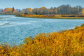 Snake River And The Golden Aspens Stock Image - 80921291