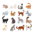 Set Of Icons With Cats. Flat Design Vector. Stock Photos - 80944213