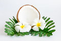 Coconut With Leaves And Flower Stock Photos - 80944643