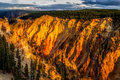 Grand Canyon Of Yellowstone Royalty Free Stock Image - 81039586