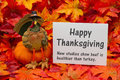 Funny Happy Thanksgiving Greeting Royalty Free Stock Images - 81041759