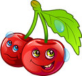Funny Image Of Two Cherries Stock Images - 81089614