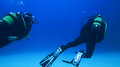 Silhouette Scuba Diving. Royalty Free Stock Image - 81112146