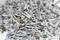 Screws Scattered Stock Image - 8125601