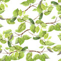 Green Leaves. Seamless Pattern. Watercolor Stock Image - 81210731