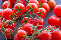 Organic Cherry Tomatoes Royalty Free Stock Images - 81220629