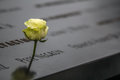 World Trade Center Memorial Stock Images - 81254404