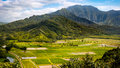 Panoramic Landscape View Of Hanalei Valley And Green Taro Fields Royalty Free Stock Image - 81346036