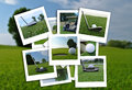 Beautiful Collage Of Golf Photos In Various Format Stock Images - 81383314