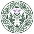 Thistle Flower And Ornament Round Leaf Thistle. The Symbol Of Scotland Royalty Free Stock Image - 81400766