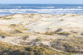 Praia Grande Beach With Vegetation Over Dunes  At Torres Beach Royalty Free Stock Photos - 81412458
