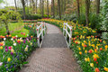 Stone Walk Way In Garden Stock Images - 81426704