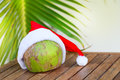 Tropical Coconut In A Christmas Red Hat Palm Leaf Stock Photo - 81455910