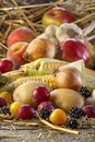 Fruits And Vegetables Royalty Free Stock Photography - 81466627
